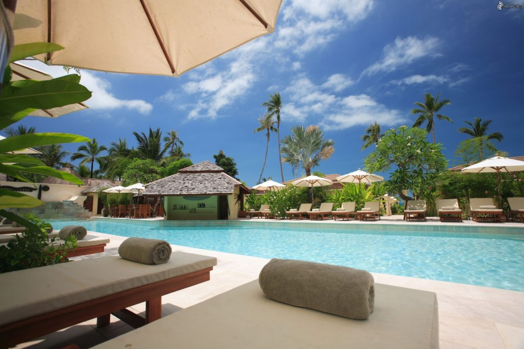 hotel pool with sunbeds and palm trees